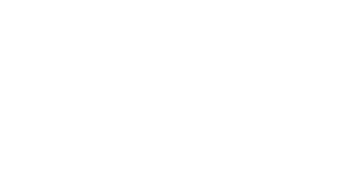 AEFE_white.png